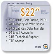 Professional Web Hosting Packages